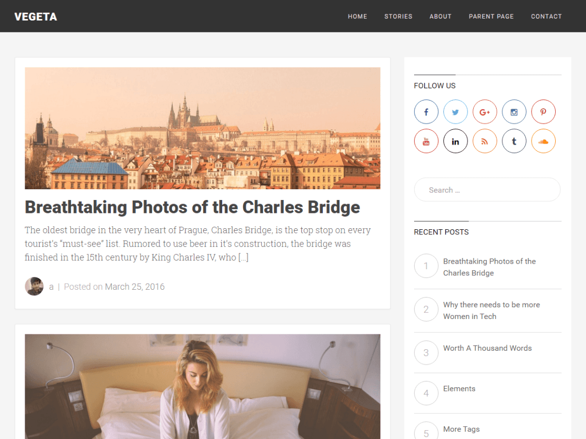 Best minimalist free wordpress theme