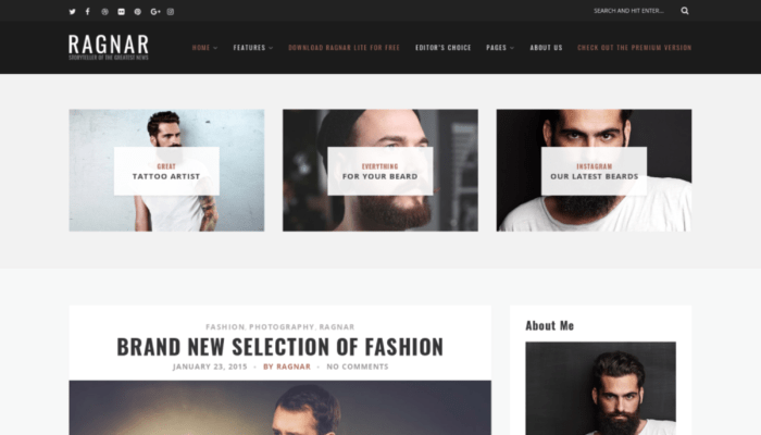 Best minimalist wordpress theme