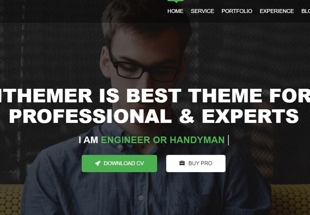 iThemer Multipurpose Portfolio Resume Theme